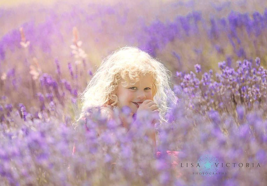 Lavender photo shoot family Bristol