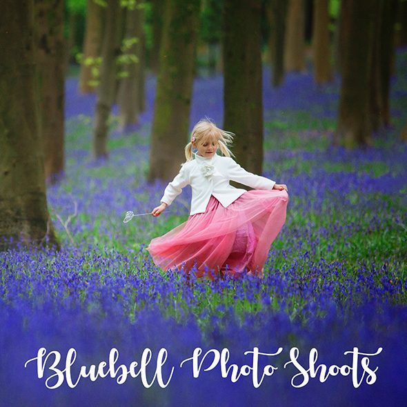 bluebell photo shoot bristol